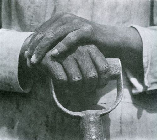 Mani su una pala