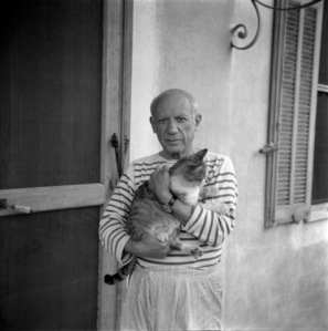 Arte, gatti e fotografie