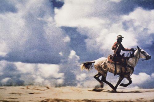 untitled cowboy