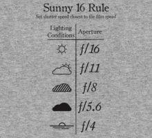 sunny F16 rule