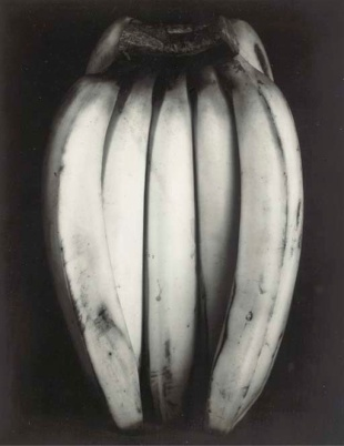 Bananas Edward Weston