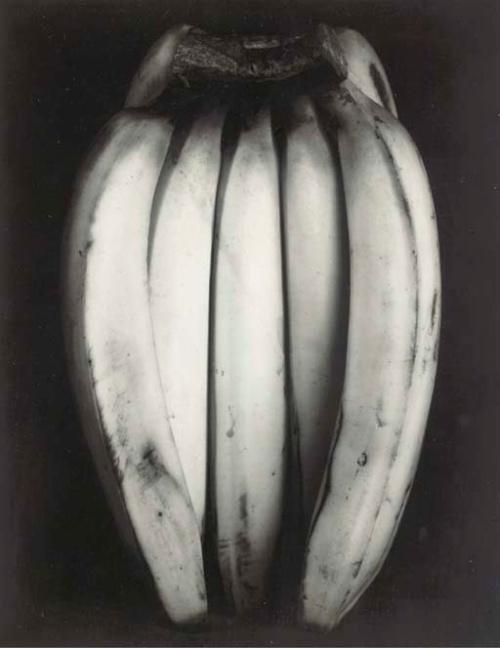 Bananas Edward Weston