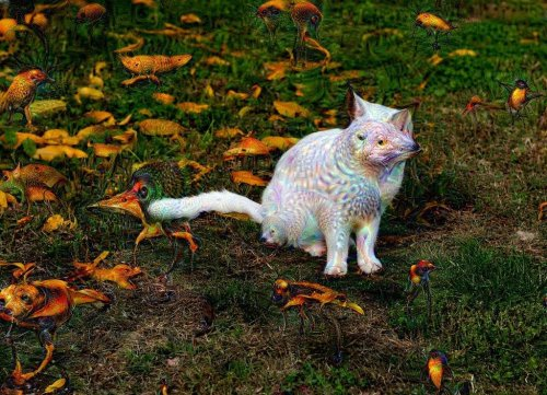 Psycho Cat - by Deep Dream & Pega, 2016